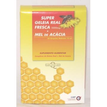 GINSENG + GELÉIA REAL 600MG - 60 CÁPSULAS - PACK 2